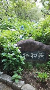 成田画像 20年7月�@.JPG