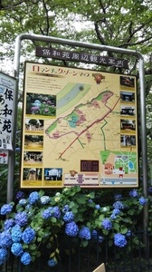 成田画像 20年7月�A.JPG