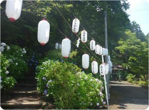 成田画像 21年7−�A.jpg