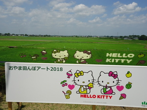 成田画像H30.7月�@.JPG