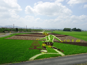 成田画像H30.7月�B.JPG